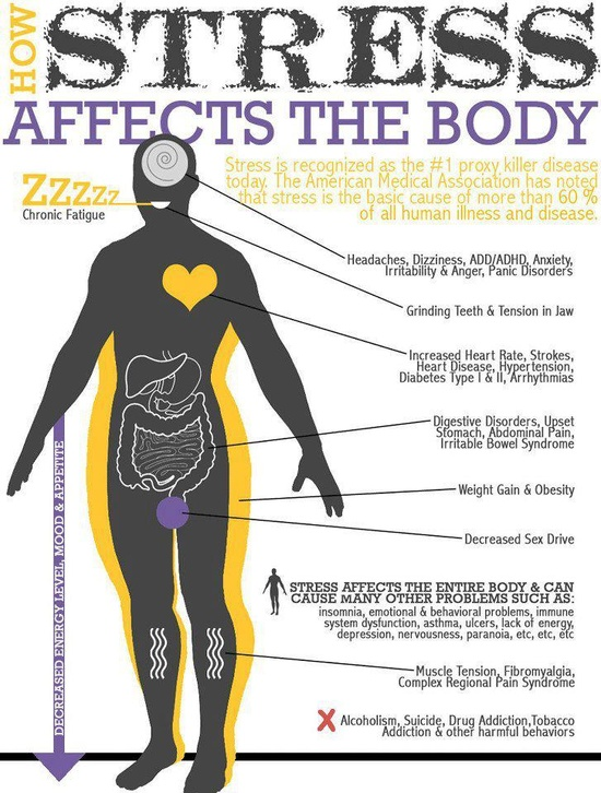 Stress affects the body